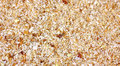 Close View Bread Crumbs Stock Photo