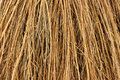 Close view cinnamon broom bristles Royalty Free Stock Photo