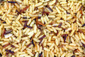 Close View Cooked Long Grain Wild Rice Royalty Free Stock Photo