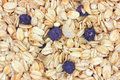 Close view of imitation blueberry granola cereal Royalty Free Stock Photography