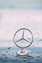 Close View Of Metal Star Logo Of Mercedes Benz At Wet Hood Of Blue Royalty Free Stock Photo