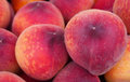 Close view of red-ripe peaches at market, Valencia Royalty Free Stock Photo