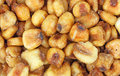 Close view of roasted salted corn nuts Royalty Free Stock Photo