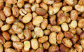 Close View Roasted Soy Nuts Stock Photo