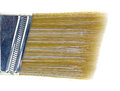 Close view sash paint brush bristles a very of the polyester of a on a white background Royalty Free Stock Photo