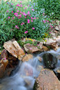 Close water flow with summer wildflowers a river cascade and in an alpine mountain setting Royalty Free Stock Photos