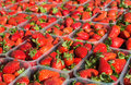 Closeup of appetizing red strawberries in transparent plastic containers Royalty Free Stock Photography