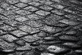 Closeup background texture of old wet cobblestone road Stock Photography