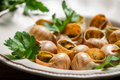 Closeup of baked snails with garlic butter Stock Photos