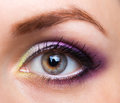 Closeup of beautiful eye with glamorous makeup womanish Royalty Free Stock Photos