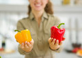 Closeup on bell pepper in hand of housewife Stock Image