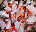 Closeup burning charcoal growing heat Royalty Free Stock Photo