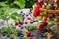 Closeup of cake wild fresh berry fruits in forest on old table Stock Images