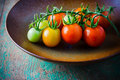 Closeup of cherry tomatoes on the vine Stock Images