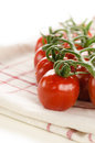 Closeup of cherry tomatoes on the vine tea towel Stock Photography