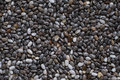 Closeup of Chia seeds Royalty Free Stock Photo