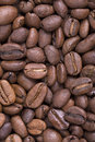 Closeup city medium roast coffee beans Royalty Free Stock Photos