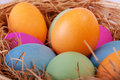 Closeup of colorful easter eggs in the nest Royalty Free Stock Photo