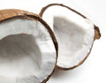 Closeup of cracked coconut Stock Photography