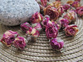 Closeup Of Dried Tearoses On W...