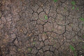 Closeup of dry soil texture in the summer Stock Photography
