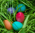 Closeup on Easter eggs in the grass