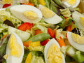 Closeup of egg salad Stock Image