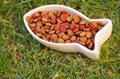 Closeup fish shaped white bowl with fresh dog food sitting on green grass, animal nutrition concept Royalty Free Stock Photo