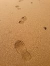 Closeup footprints golden sand Royalty Free Stock Photo