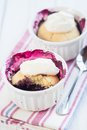 Closeup of a fresh blueberry cobbler organic natural food Stock Photography