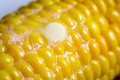 Closeup of fresh hot corn with butter on old wooden table Royalty Free Stock Images