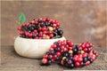 Closeup fresh Mak Mao or Thai Blueberry, local fruit in northeas Royalty Free Stock Photo