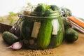Closeup of fresh pickling cucumbers Royalty Free Stock Photo