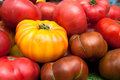 Closeup of fresh, ripe, healthy, heirloom tomatoes Royalty Free Stock Photo