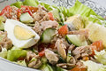 Closeup fresh salad tuna eggs vegetables Stock Photos