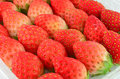 Closeup fresh strawberry Royalty Free Stock Photo