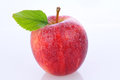 Closeup of a Gala Apple Royalty Free Stock Photo