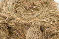 Closeup of golden hay roll Royalty Free Stock Photo