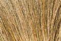 Closeup hair brown broom a Royalty Free Stock Photography