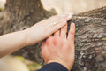 Closeup of hands newlyweds. Hands of the newlyweds with wedding rings Royalty Free Stock Photo