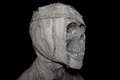 Closeup head of mummy on background Royalty Free Stock Photo