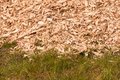 Closeup of a heap of woodchips dumped in the grass detailed view at and pile background Royalty Free Stock Photos