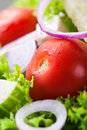 Closeup of homemade greek or summer salad with fresh vegetables in a plate Royalty Free Stock Photo