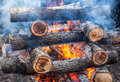Closeup of hot burning firewood in campfire Stock Photography