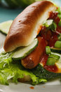 Closeup of hotdog photo dressed with cucumber lettuce green onions and ketchup Royalty Free Stock Image