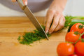 Closeup on housewife cutting fresh dill Royalty Free Stock Photo