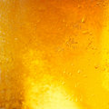 Closeup of light beer in a glass Royalty Free Stock Photo