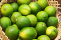 Closeup of many lime fruits Stock Images