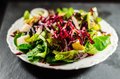 Closeup of nutritious salad in plate on table Royalty Free Stock Image
