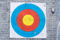 Closeup on outdoor archery target board with arrow on bullseye Royalty Free Stock Photo